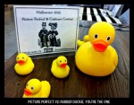15-Picture Perfect 02 Rubber Duckies