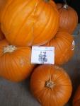 alexander w pumpkins