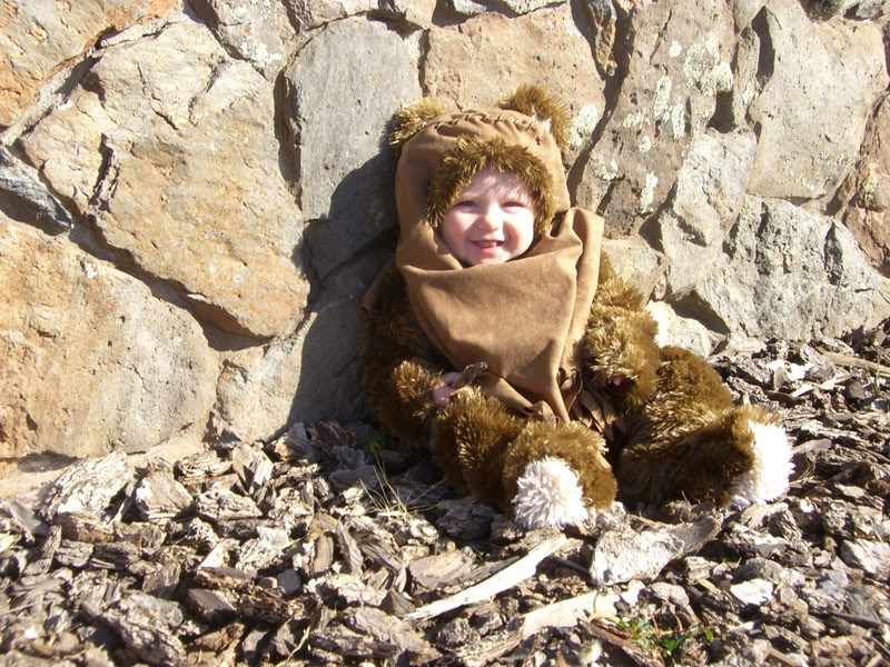 The Littlest Ewok