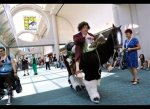 Karl Zingh Hobbit Cosplay at 2013 SDCC Photographed by Chris Pizzello for Invasion - AP