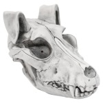 Target Animated Wolf Skull Barks and Howls