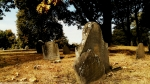 Example of Tombstone Weathering, late 1700's graveyard, Central Burying Ground cemetery, Boston, MA (16) Photographed by Eva Halloween