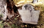 Example of Tombstone Weathering, late 1700's graveyard, Central Burying Ground cemetery, Boston, MA. Photographed by Eva Halloween.