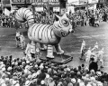 Associated Press Photo of a Big Cat from the 1939 Macy's Thanksgiving Day Parade via AtlanticCities