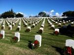 Ft. Rosecrans National Cemetery Graveyard Military Christmas Photograph Eva Halloween