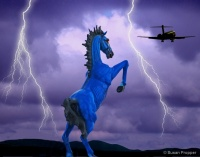 Denver Devil Horse in Lightning photgraphed by Susan Propper