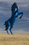 Denver Doom Horse via Pinterest - Ryan Seabury