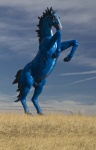 Denver Doom Horse via Pinterest - Ryan Seabury