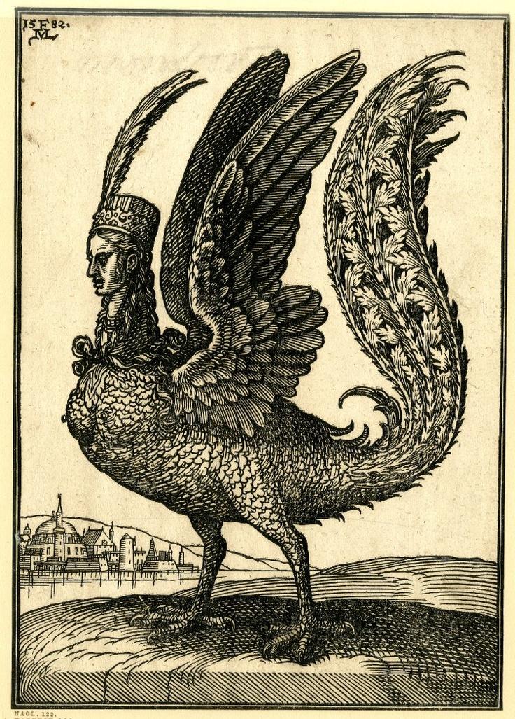 Harpy. engraving by Melchior Lorck, 1582, via paysagemauvais