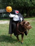 Headless Horseman Halloween Dog