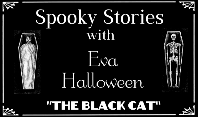Spooky Stories The Black Cat